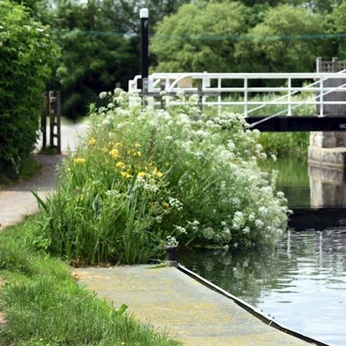 Help shape the next part of the canal restoration by filling in this short survey image