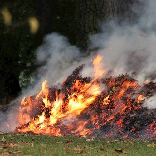 Bonfire danger and nuisance warning as hot weather continues image